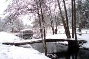 22-27-12-2010-weihnachten-im-biber-ferienhof-015