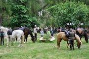 Pferdewandern