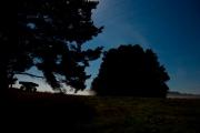 Nachtblick, © tolpix